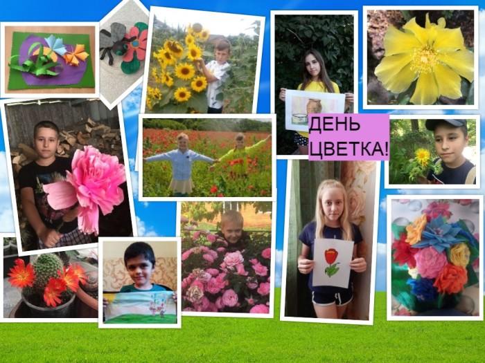 День цветка